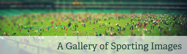 Art and Design Collections: Sporting Images